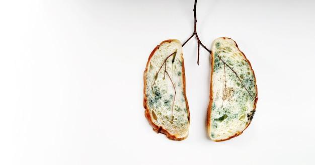 Рак легких. нездоровая болезнь легких, вызванная просроченным хлебом с полной плесенью и сухой веткой. концепция здравоохранения, медицины, коронавируса и covid-19. вид сверху. метафора концептуального фото