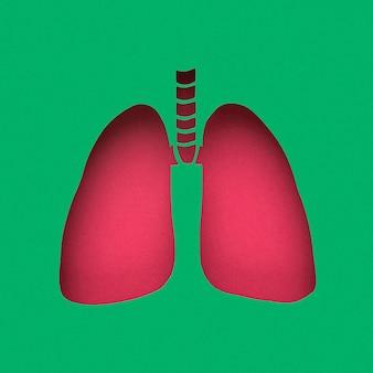 紙で作られた肺