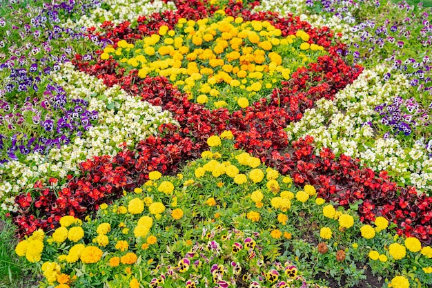 Lush flower beds in the summer garden. a bright sunny day.wide photo.