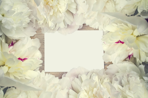 Lush frame of white peony flowers with note for congratulations. flower postcard