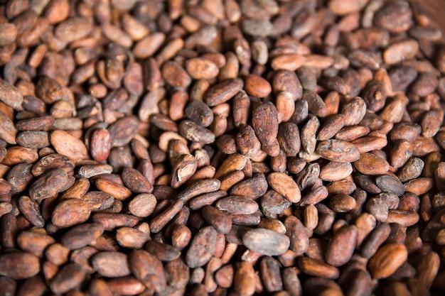 コーヒー農場で生コピluwakコーヒー豆