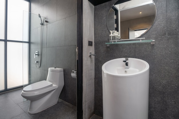 Luxury bathroom features basin, toilet bowl