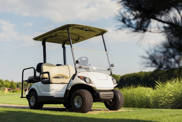 Luxury golf car on green fairway of golf resort.