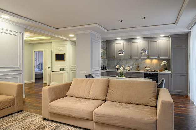 Luxury grey and white modern kitchen and living room
