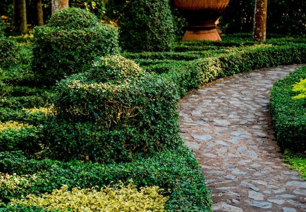 Роскошный ландшафтный дизайн тропического сада
