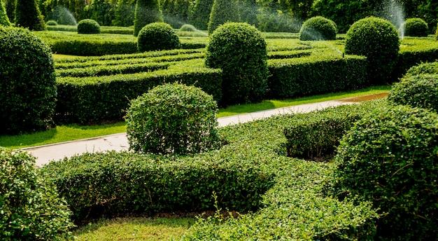 열대 정원의 고급 조경 디자인.