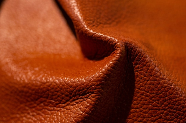 Luxury leather samples close-up