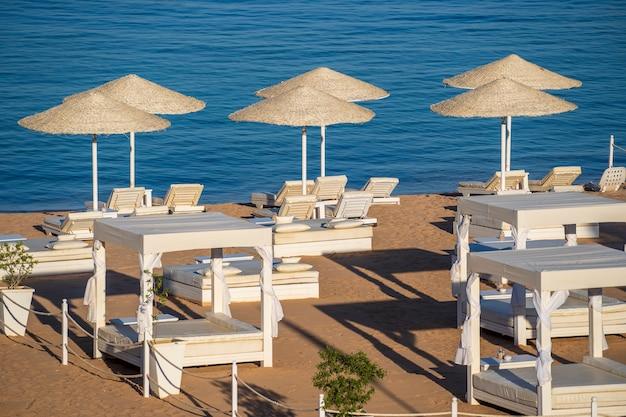 Роскошный песчаный пляж с шезлонгами и белыми соломенными зонтиками на тропическом курорте на побережье красного моря в египте, африке