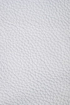 Luxury white leather samples close-up