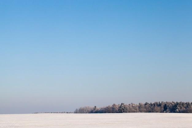 最後の降雪の後、横になっている雪。写真は冬季に撮影されました。
