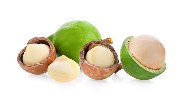 Macadamia isolated on white background.