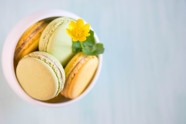 Macarons in white porcelain bowl on blue wooden table with nice flowers