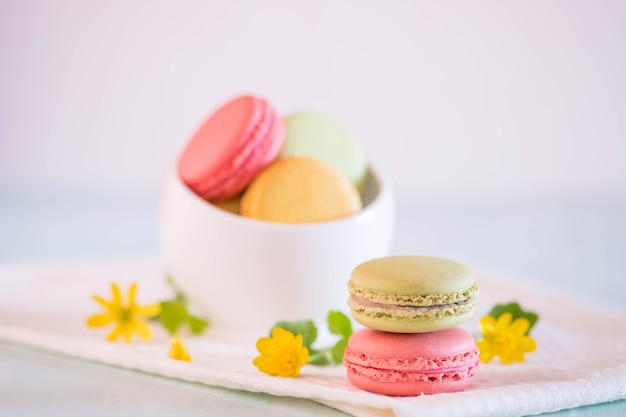 Macarons in white porcelain bowl with nice flowers