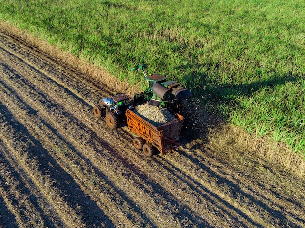 Machine harvesting sugar cane plantation aerial view