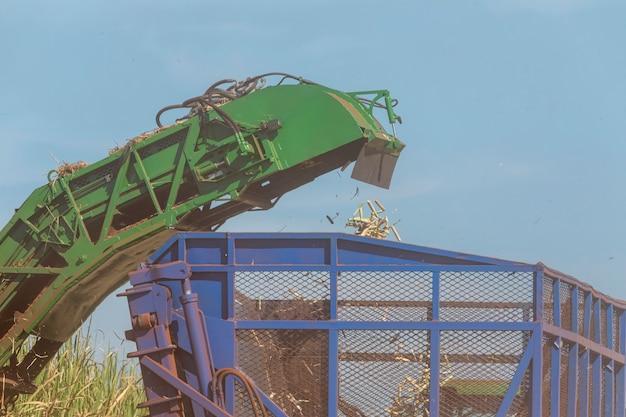 サトウキビ農園の機械収穫 Premium写真