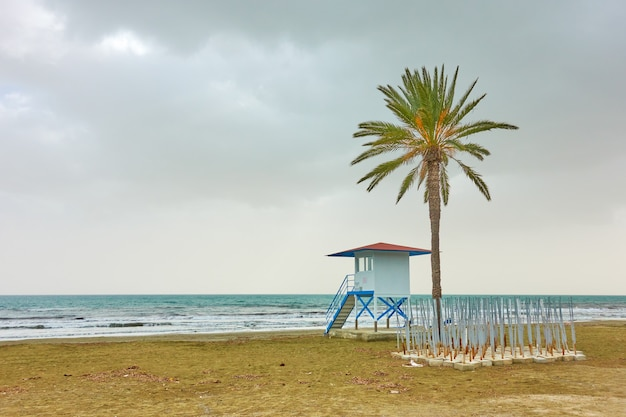 Пляж маккензи с пальмой и вышкой спасателя, ларнака, кипр