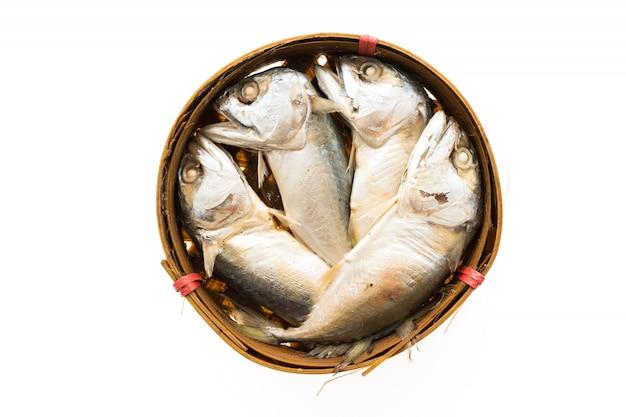 分離されたサバの魚