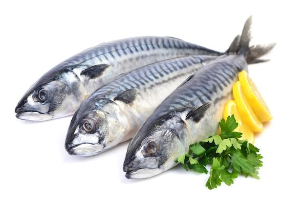 パセリとレモンとサバの魚
