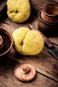 Maclura апельсиновые или яблочные макароны
