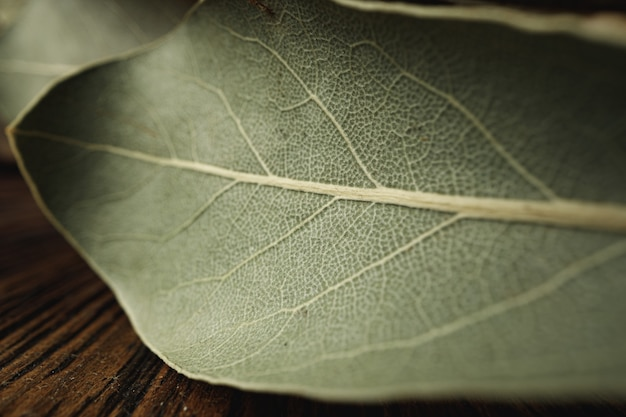 Macro photo of bay leaf spice on wooden table