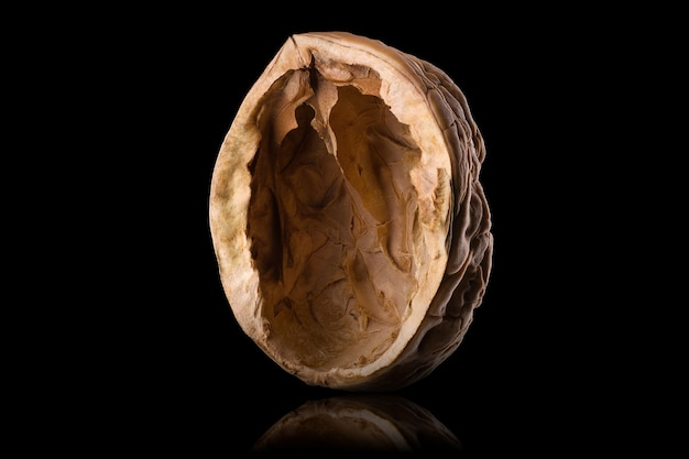 Macro photo of empty shell of walnut with reflection isolated on a black background with clipping path and reflection.
