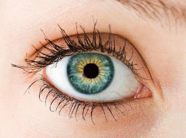 Macro photo of a female eye close up