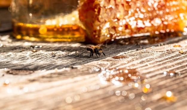 蜂の巣の蜂の巣のマクロ写真