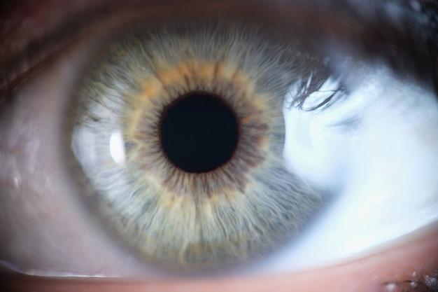 Макро фотография красивого зеленого человеческого глаза крупным планом
