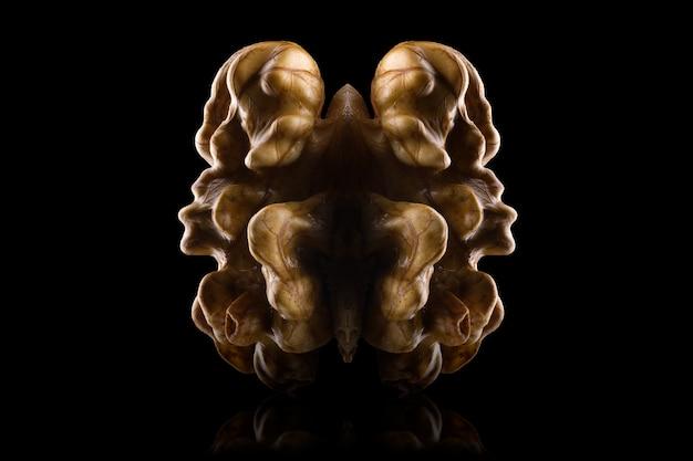 Макро-фотография ядра грецкого ореха с отражением, изолированным на черном фоне с обтравочным контуром и отражением.