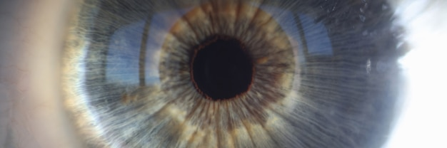 Macro photography of blue iris of female eye closeup