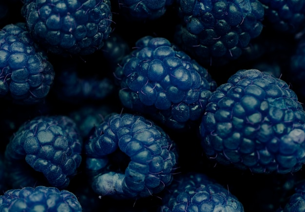 Macro shot of blue raspberry background