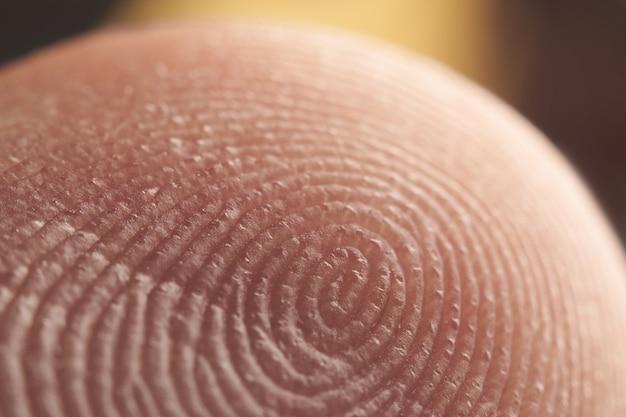 Macro shot of fingerprint pattern