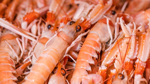 Macro shot of fresh shrimp in shop