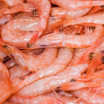 Macro shot of fresh shrimp in store