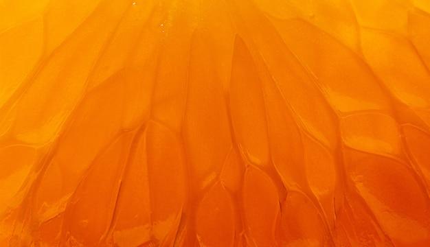 Macro shot of a mandarin fruit