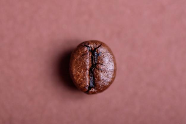 コーヒー豆のマクロ撮影
