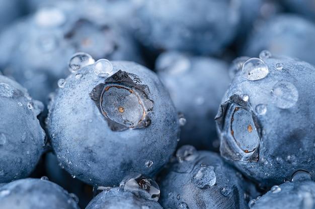 물 방울과 블루베리의 매크로 샷입니다. 과일 배경