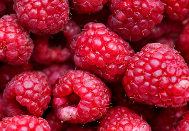 Macro shot of red raspberry background