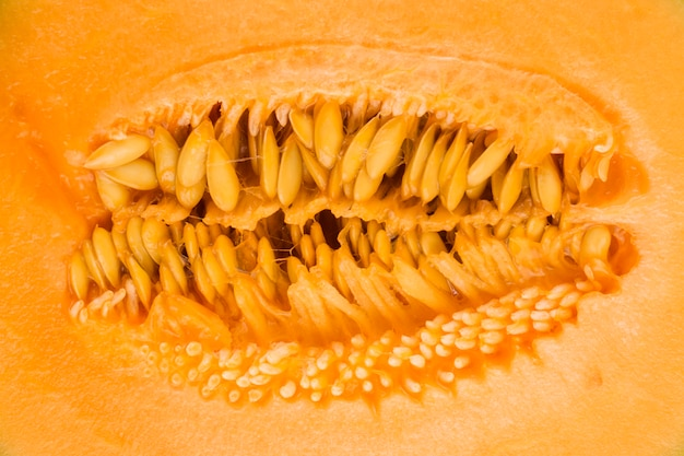 Macro shot of yellow musk melon seeds backdrop