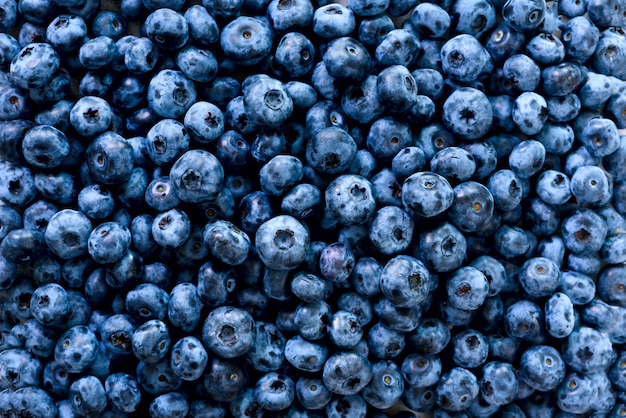 Macro texture of blueberry berries close up. summer, vitamin, vegan, vegetarian concept. healthy food. fresh blueberries background