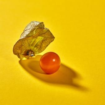 柔らかい影の黄色の背景に単一の熟した黄色のホオズキ植物と秋の構成のマクロビュー。