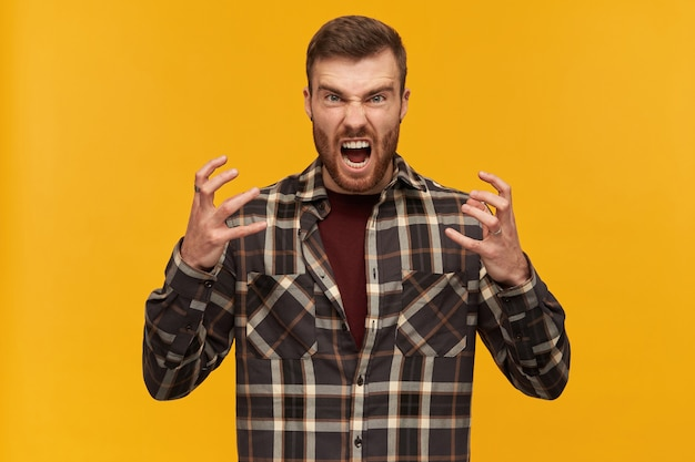 Mad furious young bearded man in checkered shirt keeps hands raised and looks crazy and irrtated over yellow wall
