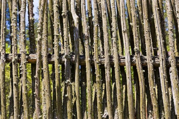 田舎の小枝柵で作られた、素朴な伝統