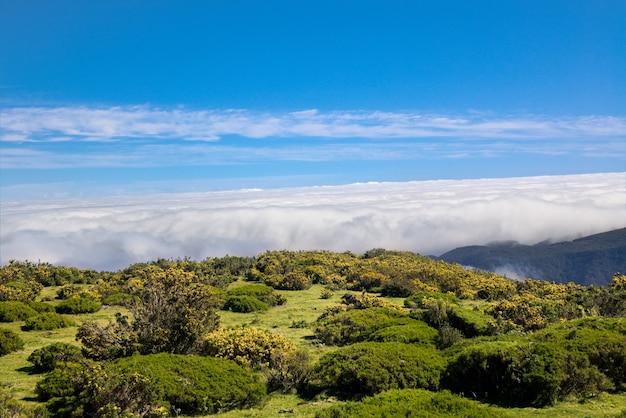 Остров мадейра красивый горный пейзаж, португалия