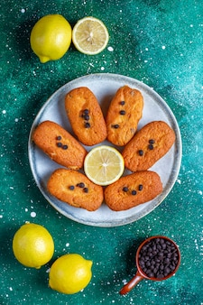 Madeleine - homemade traditional french small cookies with lemon and chocolate chips.