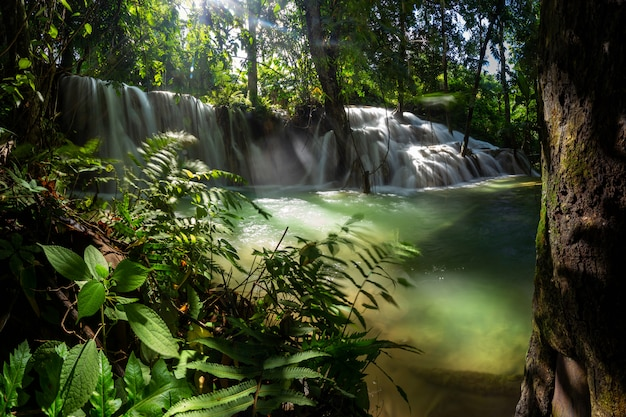 Mae kae waterfall is the waterfall that locate in national park area of ngao, lampang province, thailand