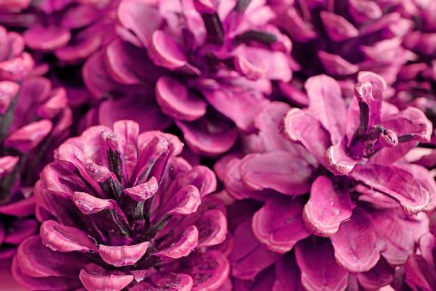 Куча пурпурных сухих сосновых шишек