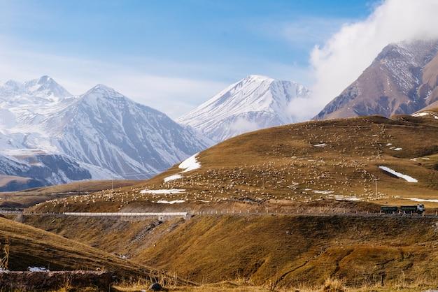 魔法の魅惑的な自然、白い雪に覆われた高山、黄色い畑