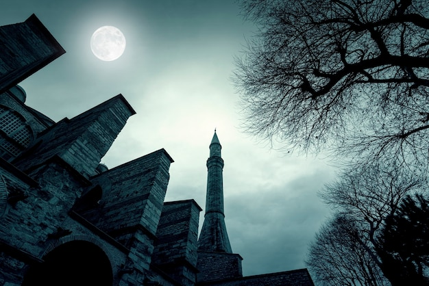 Magic night with moon over old minaret at topkapi palace in istanbul, turkey, toned picture