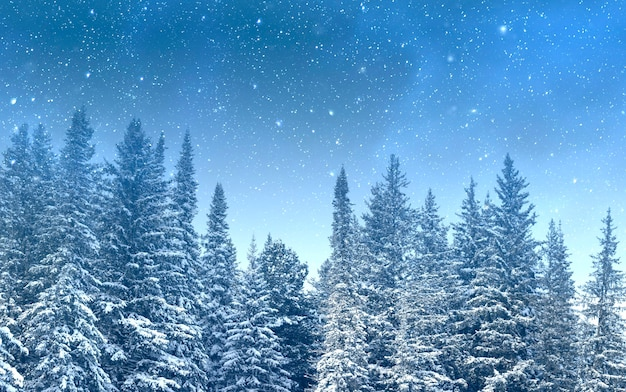 Magic night with starry sky over forest covered by snow